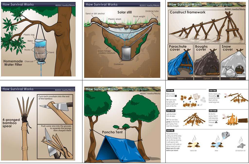 graphic relating to Printable Survival Cards called Device Rainforest Position Participate in Recreation Mrs Humanities