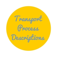transport process descriptions