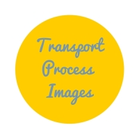 Transport process images