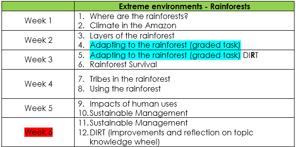 scheme of work outline tropical rainforests